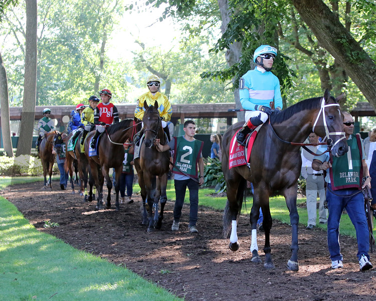The paddock prior to the 82nd Running of the Delaware Handicap (GII) at Delaware Park on July 13, 2019. Photo By: Chad B. Harmon
