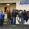 Royal Albert Hall wins the 2019 Bernardini Stakes at Aqueduct<br /> Coglianese Photos/Susie Raisher