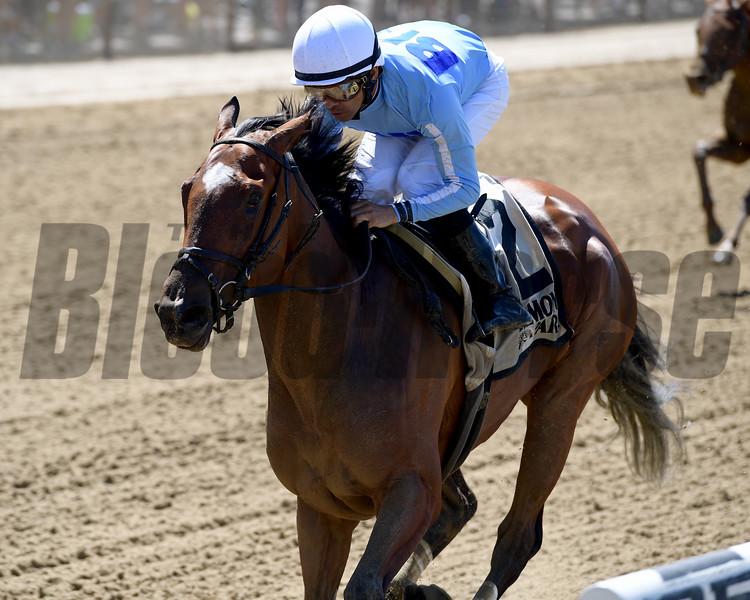 Newly Minted wins the Bouwerie Stakes Monday, May 27, 2019 at Belmont Park. Photo: Coglianese Photos/Joe Labozzetta
