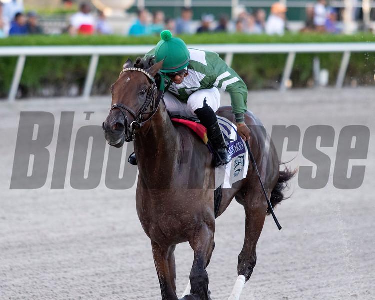 Liam's Lucky Charm wins the 2019 FTBOA Florida Sire Affirmed Stakes at Gulfstream Park. Photo: Coglianese Photos/Nicole Thomas