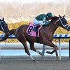 Vino Rosso wins the 2019 Stymie at Aqueduct<br /> Coglianese Photos/Elsa Lorieul
