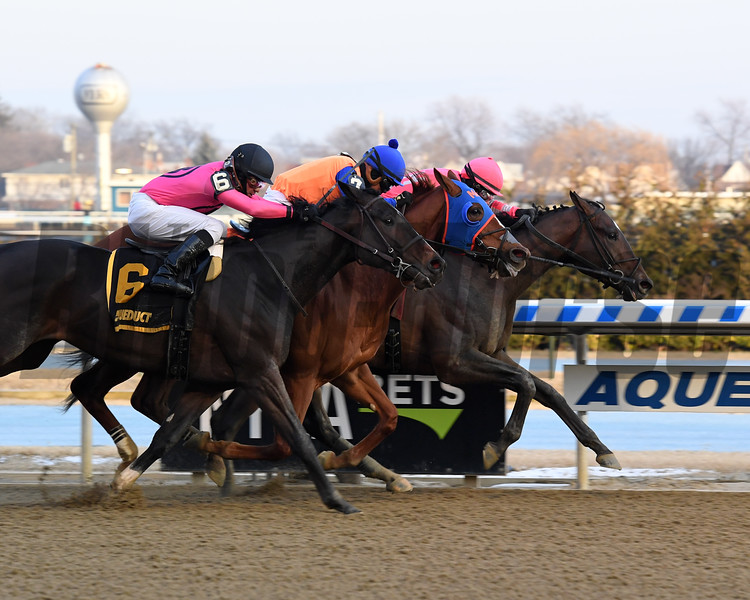 Tax wins the 2019 Withers Stakes at Aqueduct.<br /> Coglianese Photos/Chelsea Durand