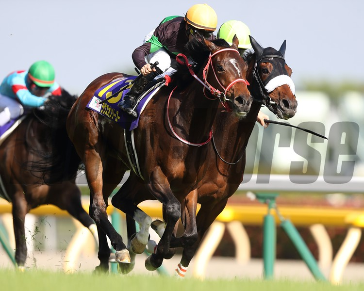 Loves Only You wins the Yushun Himba (Japanese Oaks) at Tokyo Racecourse. Photo: Masakazu Takahashi