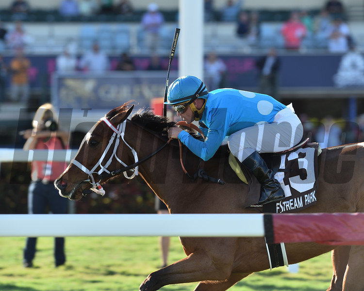 Starship Jubilee wins the 2019 Sunshine Millions Filly and Mare Turf at Gulfstream Park<br /> Coglianese Photos/Lauren King