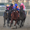 Tax wins the 2019 Withers Stakes at Aqueduct.<br /> Coglianese Photos/Rob Mauhar
