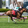 Scottish Jig - AOC, Belmont Park, May 19, 2019<br /> Coglianese Photos
