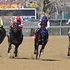 Mind Control wins 2019 Bay Shore Stakes at Aqueduct. Photo: Coglianese Photos/Rob Mauhar