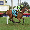Play On wins the 2019 Melody of Colors Stakes at Gulfstream Park<br /> Coglianese Photos/Leslie Martin