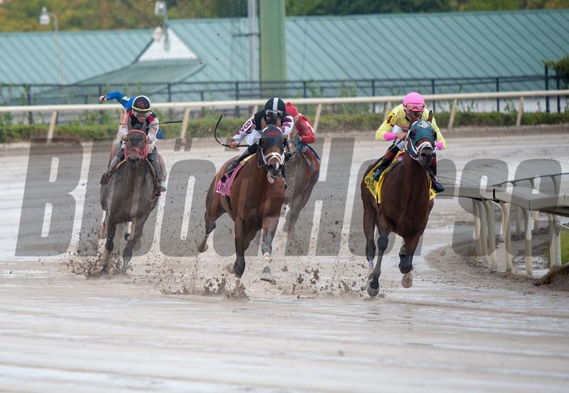 World of Trouble withIrad Ortiz. wins The $150.000  Gulfstream Park Sprint ; @ Gulfstream Park Morning; Jan24 2019; ©JoeDiOrio/Winningimages.biz.
