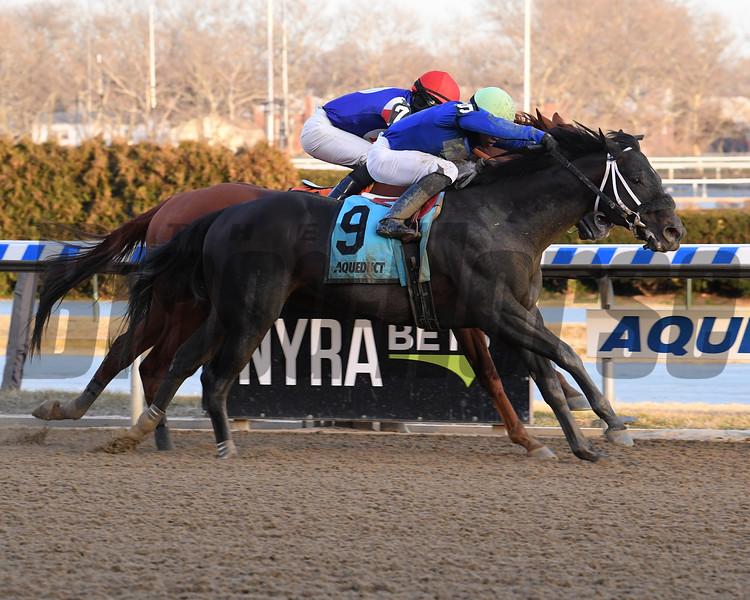 Honor Up wins the 2019 Say Florida Sandy Stakes at Aqueduct<br /> Coglianese Photos/Viola Jasko