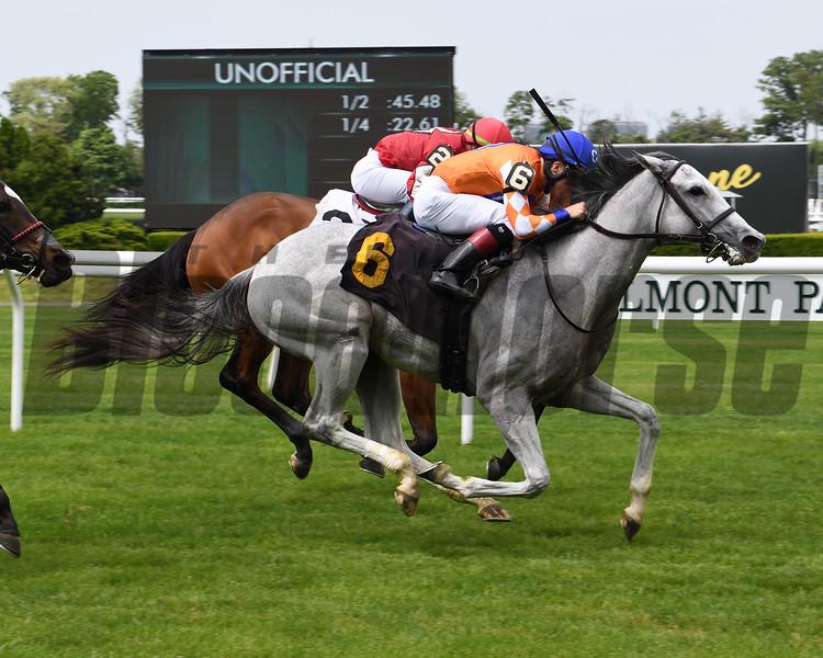 Lady Fatima - Maiden Win, Belmont Park, May 23, 2019<br /> Coglianese Photos