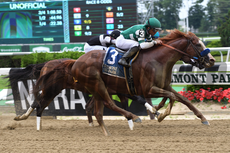Catalina Cruiser wins the 2019 True North Stakes at Belmont Park<br /> Coglianese Photos/Derbe Glass