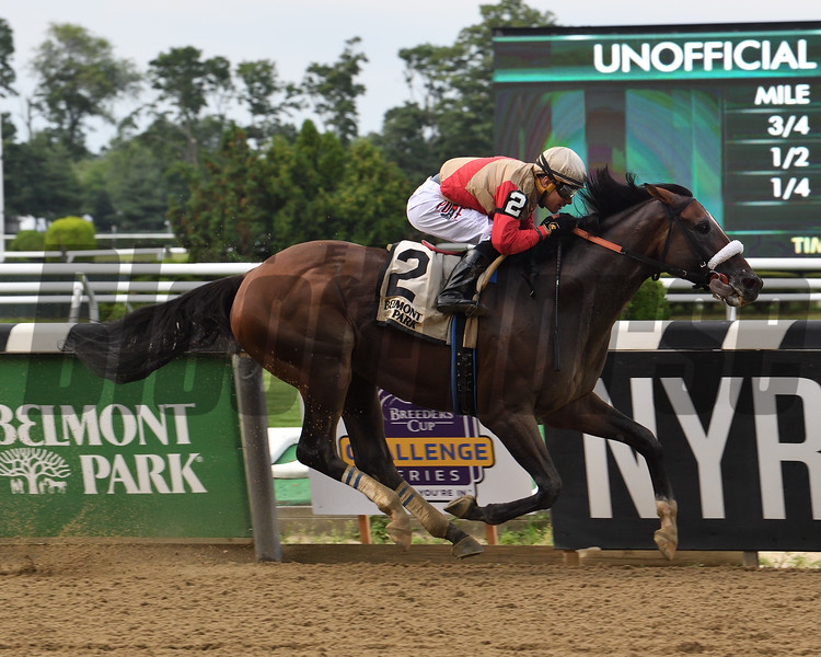 Preservationist wins the Suburban Stakes Saturday, July 6, 2019 at Belmont Park. Photo: Coglianese Photos/Susie Raisher