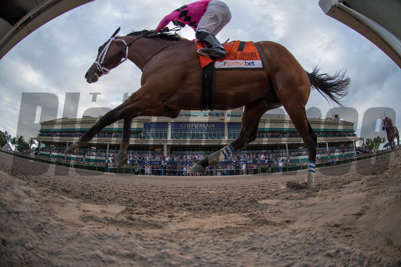Maximim Secrity with Luis Saez up. wins The Xpressbet Florida Derby .  @ Gulfstream Park.  March 30 2019<br /> ©JoeDiOrio/Winningimages.biz