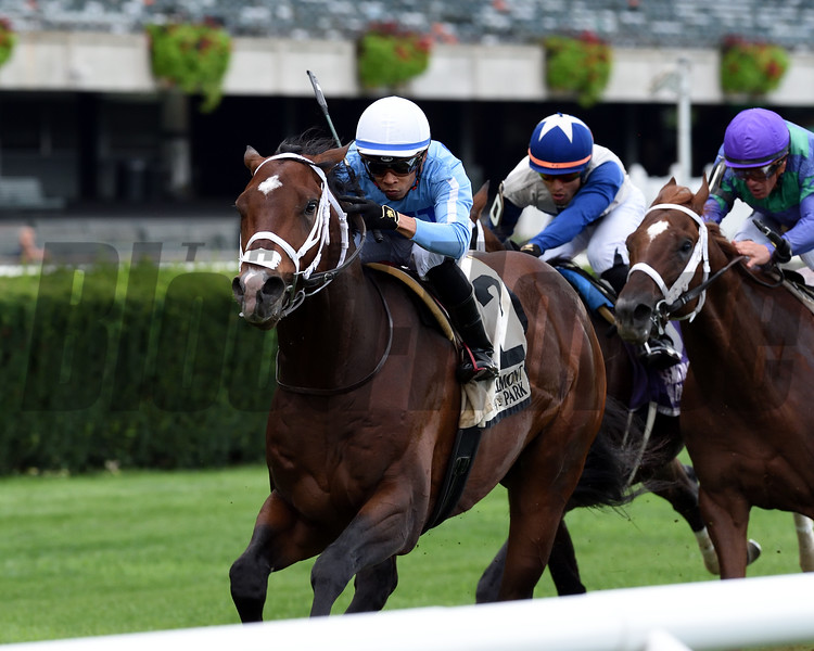 Uncle Benny wins the 2019 Allied Forces Stakes<br /> Coglianese Photos/Chelsea Durand