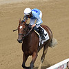Newly Minted wins the 2019 Fleet Indian Stakes at Saratoga<br /> Coglianese Photos/Elsa Lorieul