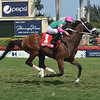 Salute the Colonel wins the 2019 Copingaway Stakes at Gulfstream Park<br /> Coglianese Photos/Lauren King
