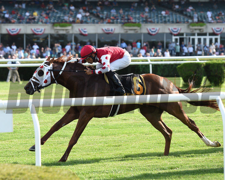 Henley's Joy wins the 2019 Belmont Derby Invitational  <br /> Coglianese Photos/Chelsea Durand