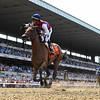 Guarana wins the 2019 Acorn Stakes at Belmont Park<br /> Coglianese Photos