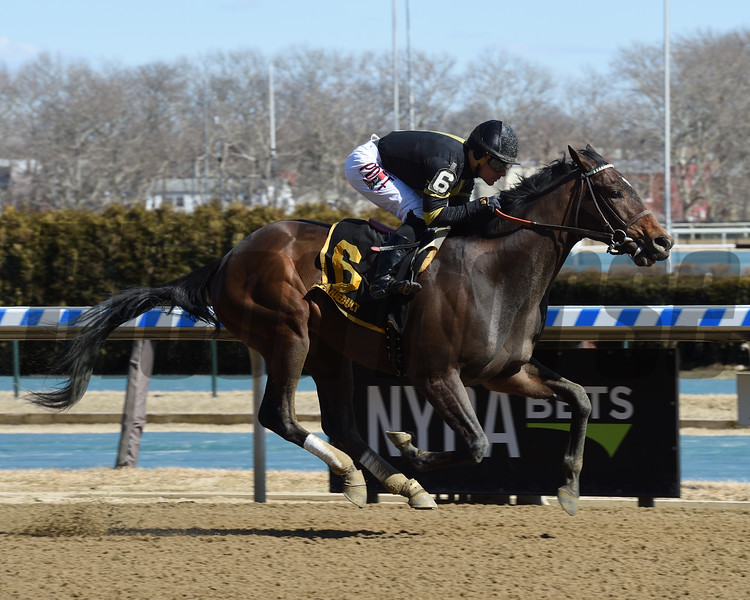 Durkin's Call wins the Gander Stakes at Aqueduct Sunday, March 17, 2019. Photo: Coglianese Photos/Elsa Lorieul