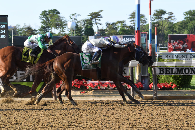 Pat On the Back wins the Commentator Stakes Monday, May 27, 2019 at Belmont Park. Photo: Coglianese Photos/Susie Raisher