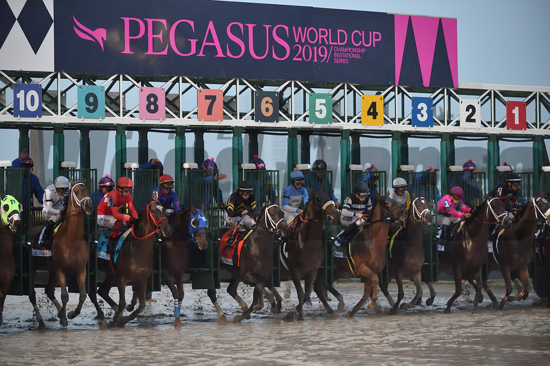 City of Light wins the 2019 Pegasus World Cup at Gulfstream Park<br /> Coglianese Photos/Derbe Glass