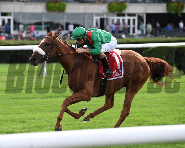 Edisa wins the 2019 Jockey Club Oaks Invitational   <br /> Coglianese Photos/Joe Labozzetta
