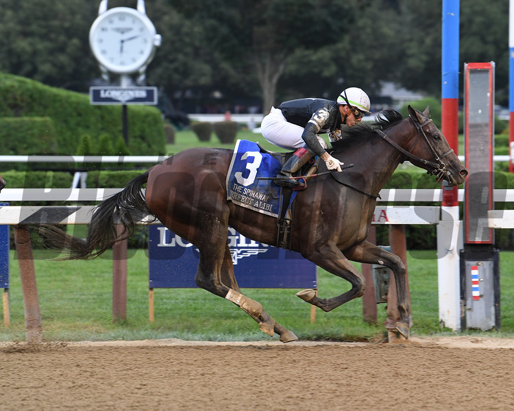Perfect Alibi wins the 2019 Spinaway Stakes at Saratoga. Photo: Coglianese Photos/Susie Raisher
