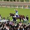 Admire Mars wins the 2019 NHK Mile Cup at Tokyo Racecourse. Photo: Naoji Inada