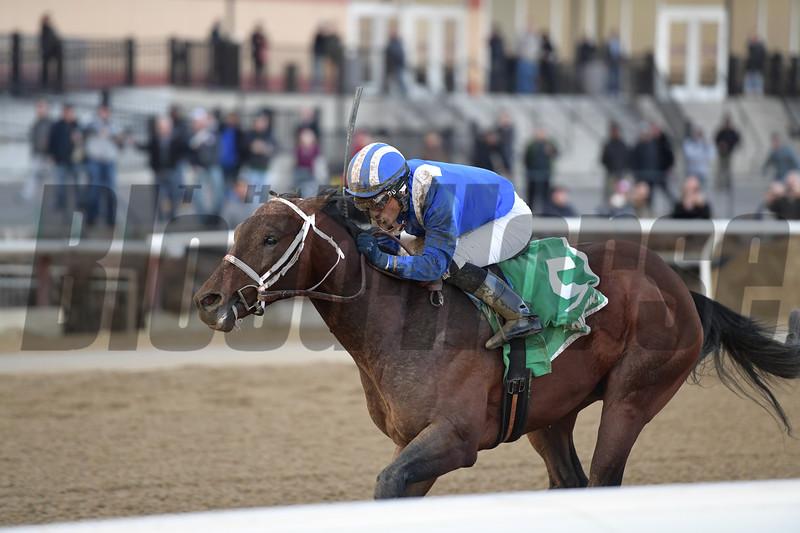 Haikal wins the 2019 Gotham Stakes at Aqueduct<br /> Coglianese Photos/Joe Labozzetta
