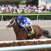 Prince Lucky wins the 2019 Gulfstream Park Mile<br /> Coglianese Photos/Lauren King