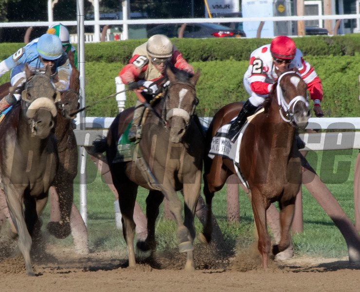 Preservationist ridden by Junior Alvarado holds off the competition to win the 66th running of The Woodward at the Saratoga Race Course Saturday August 31, 2019 in Saratoga Springs, N.Y.  Photo by Skip Dickstein