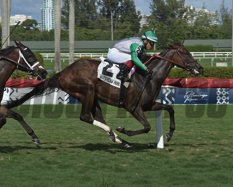 Onyx wins the 2019 Sharp Susan Stakes at Gulfstream Park<br /> Coglianese Photos/Lauren King