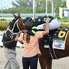 Stormy Embrace wins the 2019 Princess Rooney Stakes at Gulfstream Park<br /> Coglianese Photos/Lauren King