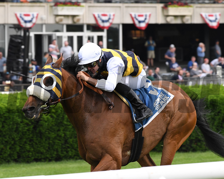 Amade wins the 2019 Belmont Gold Cup Invitational<br /> Coglianese Photos/Chelsea Durand