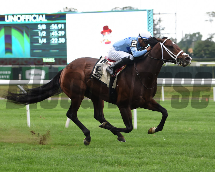 Uncle Benny wins the 2019 Allied Forces Stakes	<br /> Coglianese Photos