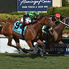 Valedictorian wins the 2019 Sand Springs Stakes<br /> Coglianese Photos/Leslie Martin