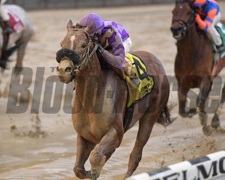 Pat On the Back wins 2019 Affirmed Success Stakes at Belmont Park. Photo: Coglianese Photos/Joe Labozzetta