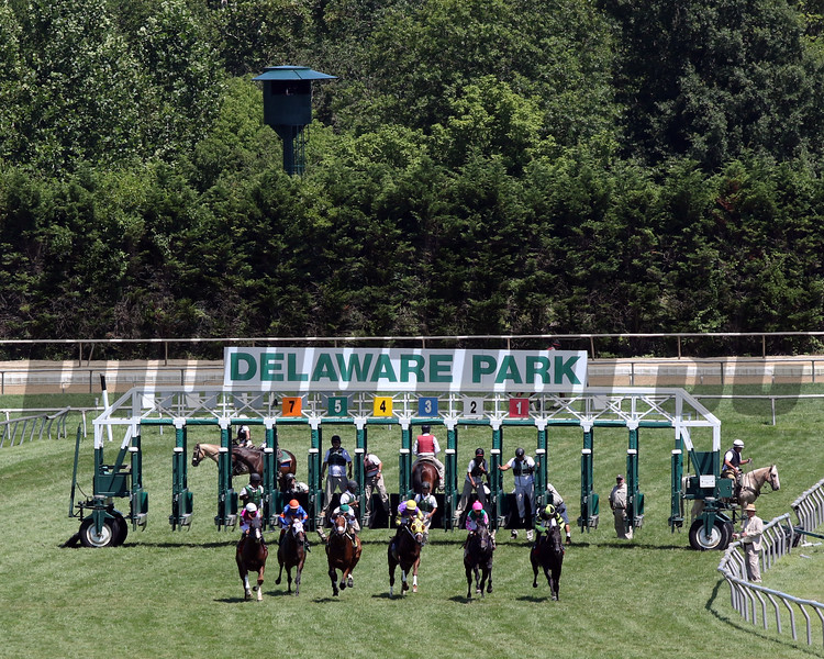 Horses just after the start at Delaware Park on July 13, 2019. Photo By: Chad B. Harmon