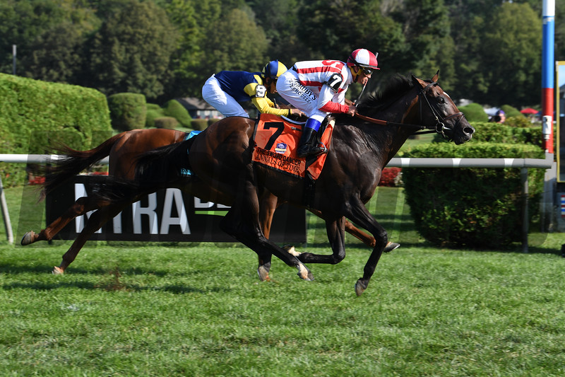 Annals of Time wins the 2019 Sword Dancer at Saratoga Race Course. Photo: Coglianese Photos