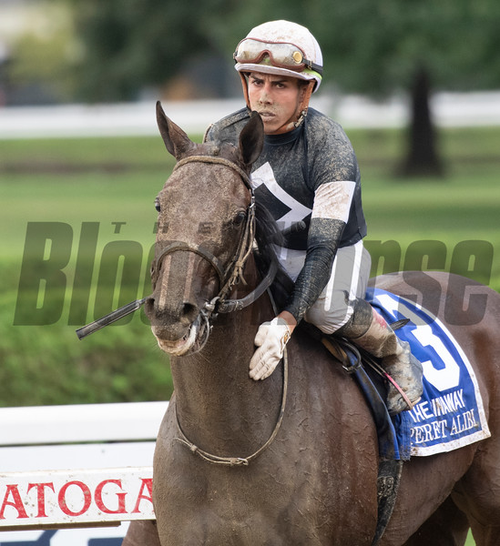 Perfect Alibi with jockey Irad Ortiz Jr. wins the 128th running of the Spinaway at the Saratoga Race Course Sept. 1, 2019 in Saratoga Springs, N.Y.  Photo by Skip Dickstein