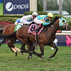 Hembree wins the 2019 El Prado Stakes at Gulfstream Park<br /> Coglianese Photos/Lauren King