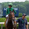 Gucci Factor wins the Poker Stakes Sunday, June 16, 2019 at Belmont Park. Photo: Coglianese Photos/Susie Raisher