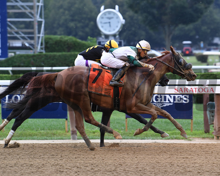 Blue Prize wins the 2019 Summer Colony Stakes at Saratoga. Photo: Coglianese Photos