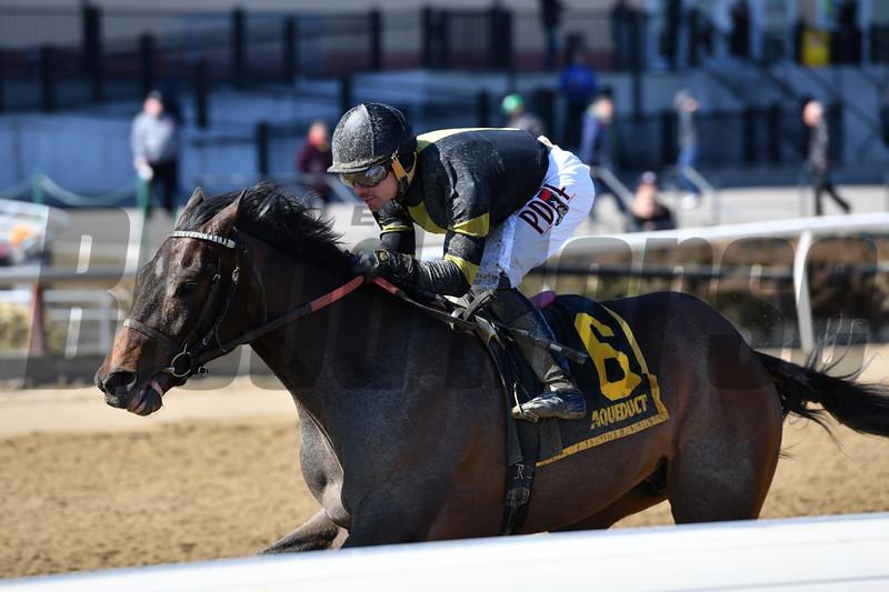 Durkin's Call wins the Gander Stakes at Aqueduct Sunday, March 17, 2019. Photo: Coglianese Photos/Joe Labozzetta