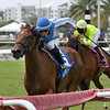 Zarina wins the 2019 Martha Washington Stakes at Gulfstream Park<br /> Coglianese Photos/Ryan Thompson