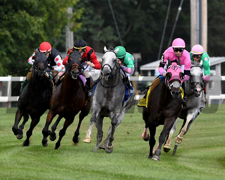 Leinster wins the 2019 Troy Stakes at Saratoga<br /> Coglianese Photos/Rob Mauhar