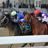 Honor Up wins the 2019 Say Florida Sandy Stakes at Aqueduct<br /> Coglianese Photos/Joe Labozzetta