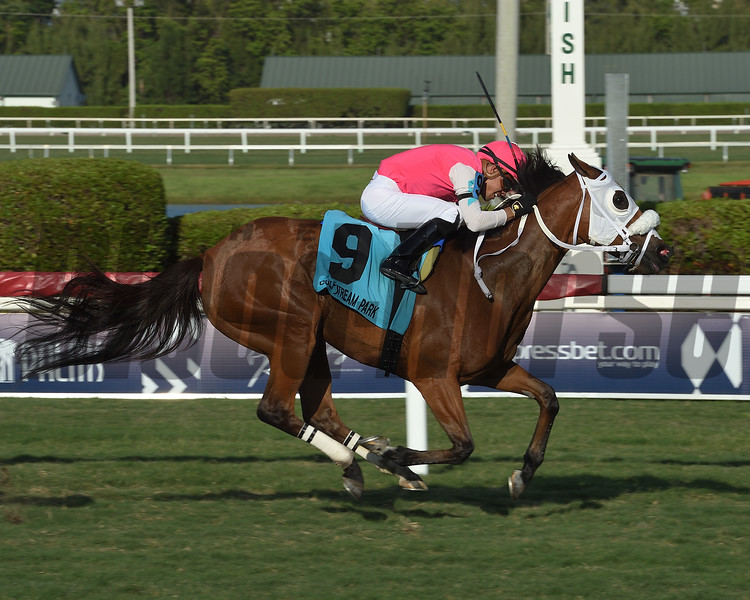 Quebec wins 2019 Powder Break Stakes at Gulfstream Park. Photo: Coglianese Photos/Lauren King