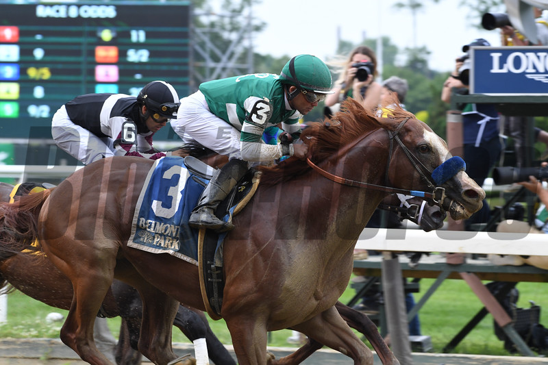Catalina Cruiser wins the 2019 True North Stakes at Belmont Park<br /> Coglianese Photos